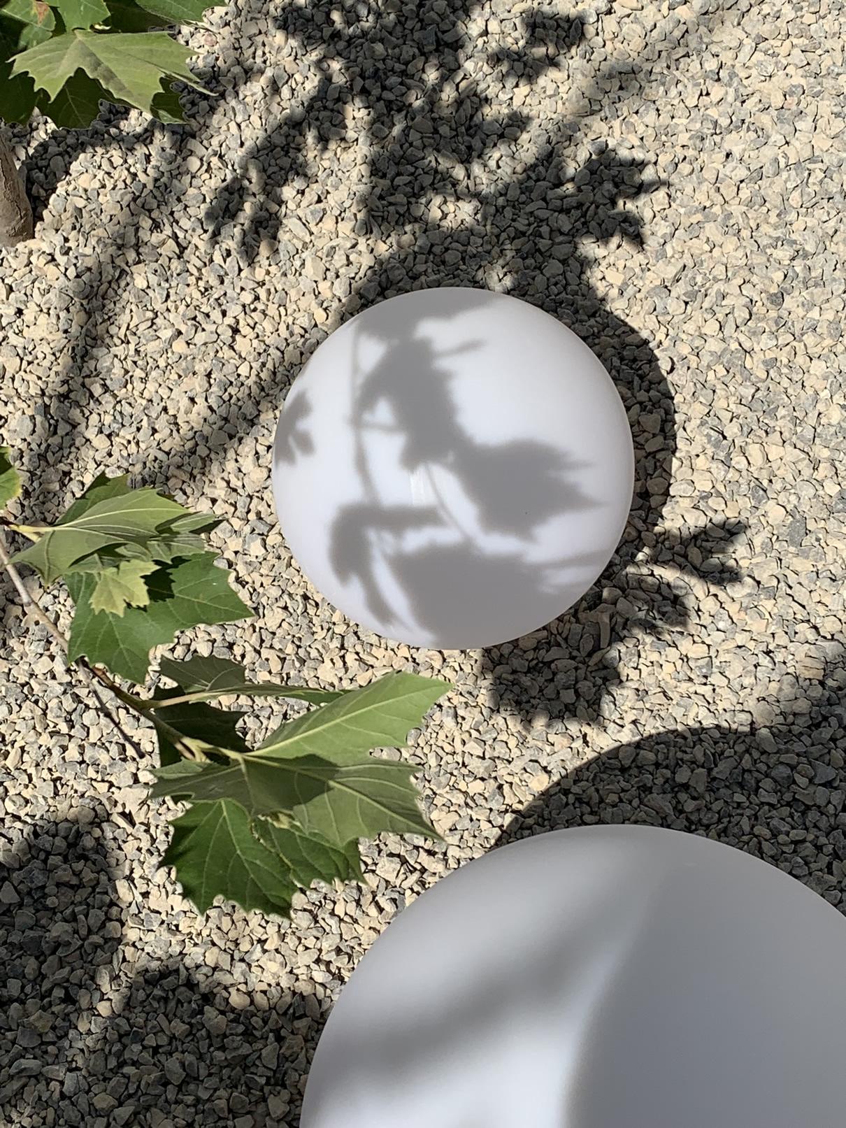 Lisa Chestnut Landscape